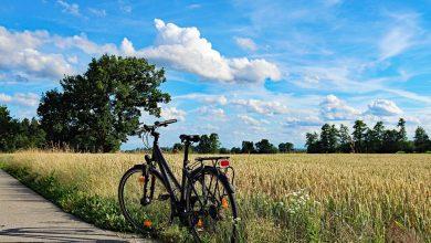 Jest w czym wybierać. Najciekawsze szlaki rowerowe w Polsce (fot.pogądowe/www.pixabay.com)