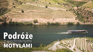 Podróże z Wędrownymi Motylami - Porto i dolina Douro (sob. 10:00, nd. 10:20)