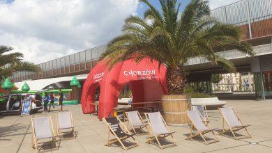 Spis powszechny pod palmami.W sobotę można się spisać na Nowym Rynku w Chorzowie (fot.poglądowe - UM Chorzów)