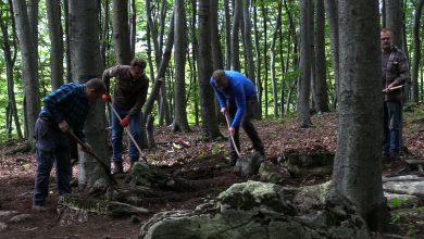 Co kryje Bukowa Góra? Archeolodzy ze Sztygarki na tropie sensacyjnego odkrycia w naszym regionie!