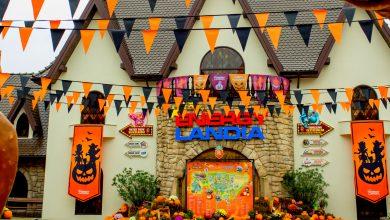 Straszna promocja na Halloween w Energylandii (fot. mat. prasowe)