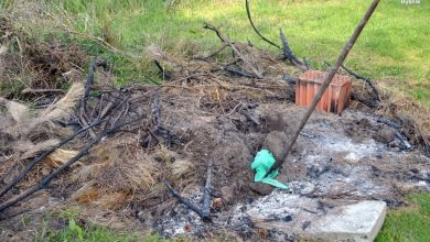 Straszne! Dwaj zwyrodnialcy zabili 4 szczeniaki i zakopali je w ziemi [ZDJĘCIA, WIDEO]. Fot. Policja Śląska