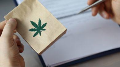 Marihuana medyczna, dlaczego jest tak potrzebna? (foto: freepik)