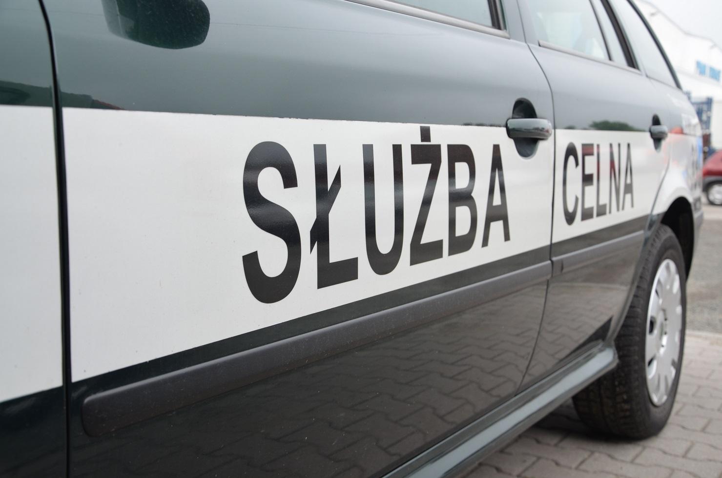 Polska z zaniepokojeniem przyjęła decyzję władz Belgii o wydaniu wizy wjazdowej wpisanej do Systemu Informacyjnego Schengen Ludmile Kozłowskiej - poinformowało Ministerstwo Spraw Zagranicznych