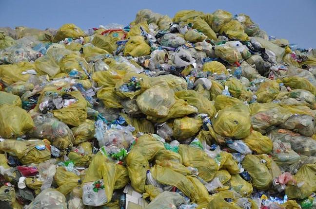Gliwice: Nowe stawki za odbiór śmieci!